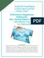 INTRODUCION regulacion
