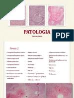 Patologia Básica