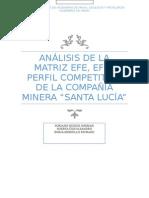 ANALISIS DE EFE, EFI Y PERF. COMPET..docx