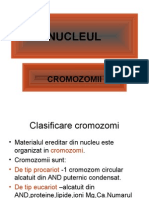 Biologie Clasa XII_Cromozomii_ppt