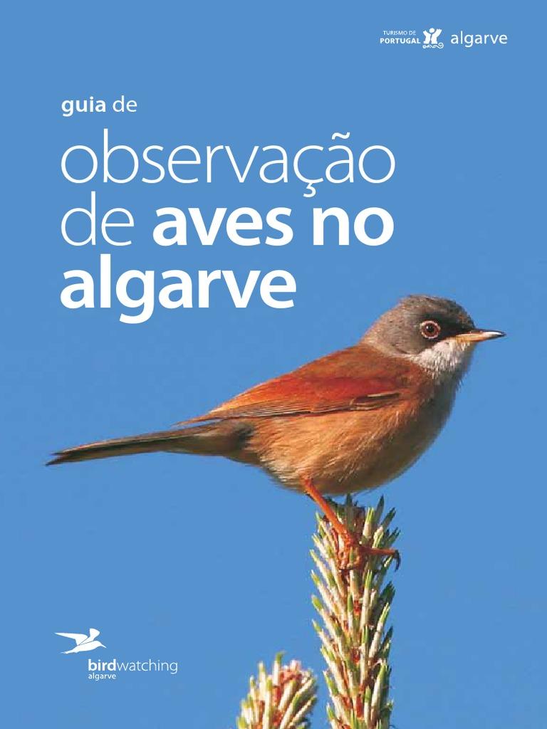 521cfb1f62 Guia de Observação de Aves No Algarve