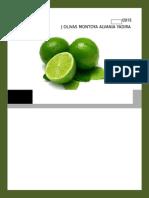 Perfil de Mercado Del Limon PERSA en El Mercado de España .