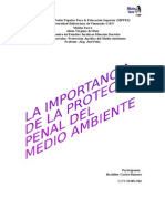 LA IMPORTANCIA DE LA PROTECCION PENAL DEL MEDIO AMBIENTE.docx