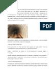 Descripcion Proceso Minero Subterraneo