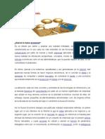 La Nueva Economia (Unidad 6)
