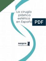 Estudio_Secpre_2010