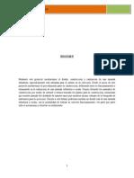 Proyecto Zaranda Vibratoria