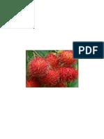 Manfaat Rambutan