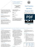 Softstory Brochure Word