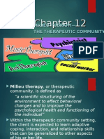 Milieu Therapy (1) FINAL]