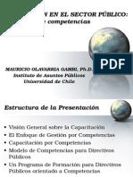 Capacitacion en El Sector Publico - U.chile