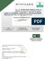 CERTIFICADO NR 11.ppt