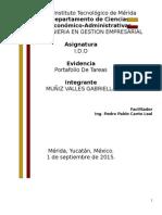 Portafolio de i.d.o u1