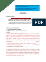 Guía Para El Informe de Practicas-PPP III-primer Capítulo