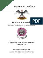 Trabajo de Laboratorio Nr 5 de tecnologia de concreto