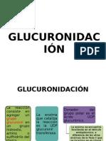 Expo Glucuronidación1.0