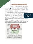 166822429 the Major Histocompatibility Complex