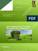 Bio Combustible