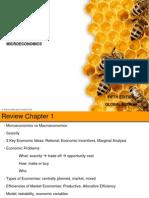 HO5ge_Ch09 - Microeconomics