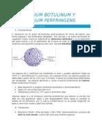Clostridium Botulinum y Clostridium Perfringens resumen para Gastronomía
