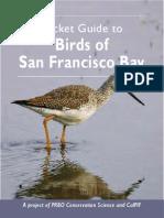Pocket Guide to Birds of San Francisco Bay