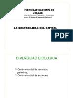 01_Contabilidad Capital Natural