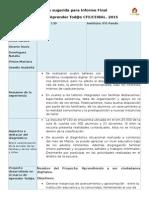 Pauta-sugerida-informe-Practicantes-2015-1.doc