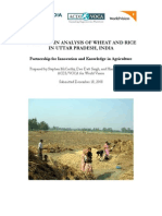 Value chain of wheat n rice in U.P..pdf