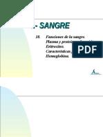18.- FUNCIONES DE LA SANGRE.ppt