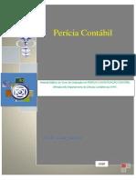 Perícia e Investigação Contábil 2012