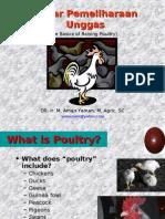 Poultry Basics