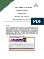Data Monkey