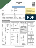 FORMATO CIE 2007.pdf