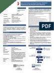 FFIE - Serie VI - Resumen Informativo