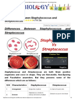 Differences Between Staphylococcus and Streptococcus - Microbiology Notes
