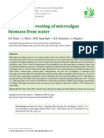 Low-cost harvesting of microalgae biomass from water