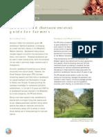 Sandalwood Fact Sheet 1 Sml