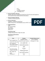 pengkajian+dx resikoibujanin