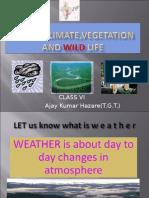 Indiawildlife Climateandvegetation2 110711080219 Phpapp02 Copy
