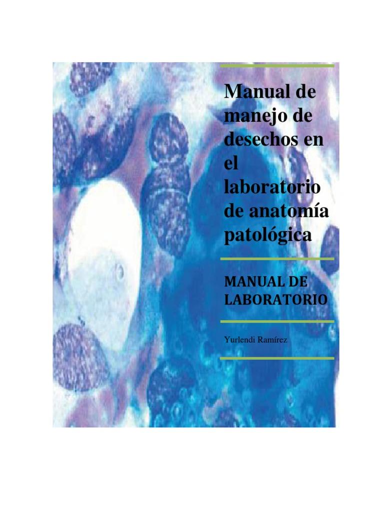 Magnífico Manual De Laboratorio De Anatomía Colección - Imágenes de ...