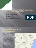 Analiza Și Diagnoza Potentialului Uman Alex Sava
