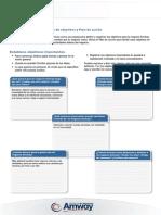 Establecimiento de objetivos y Plan de acción
