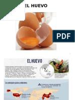 CLASE 15 Huevos