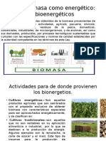 Biomasa Como Energetico