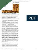 Alimentos Transgénicos- Ventajas y Desventajas - Marketing by Marketing4food