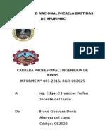 Informe Pachaconas