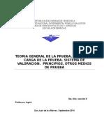TRABAJO DE PRUEBA, INGRID 2014.doc
