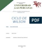 Trabajo 1 Ciclo de Wilson