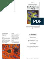 Understanding Marine Fish