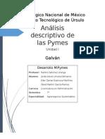 Unidad 1 Analisis Descriptivo de Las Pymes